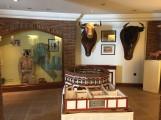 bull fighting museum